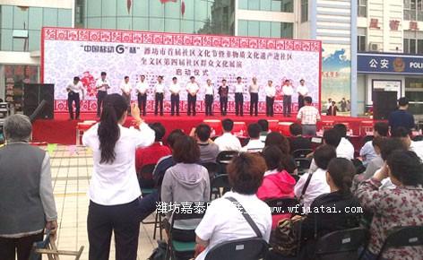 社区文化节启动仪式